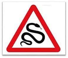 Осторожно - змеи!