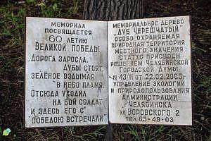 Дуб памятник вЧелябинске 1